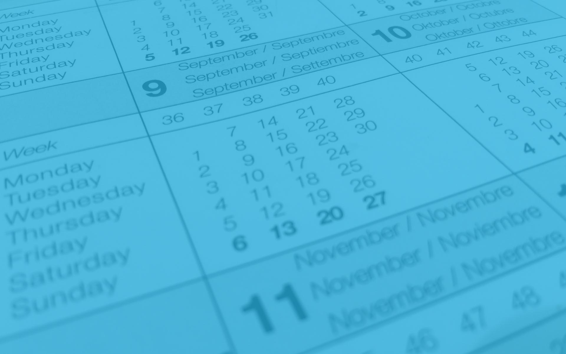 calendario del contribuyente para el año 2021